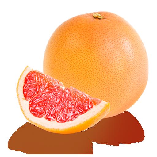Grapefruit Half Slices